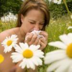 Domena internetowa o alergiach – tekst dla alergików